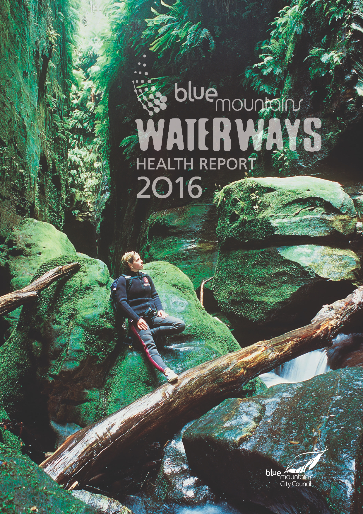 2016 Blue Mountains Waterways Health Report