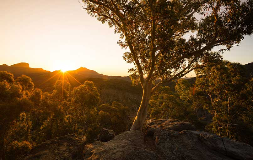 image of sunrise in Blue Mountains