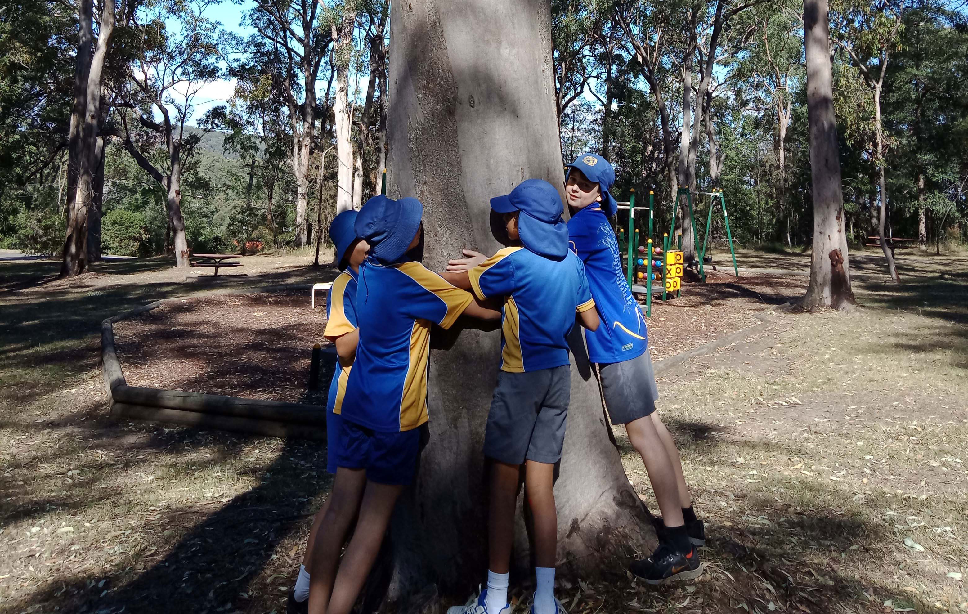 students cuddling a tree