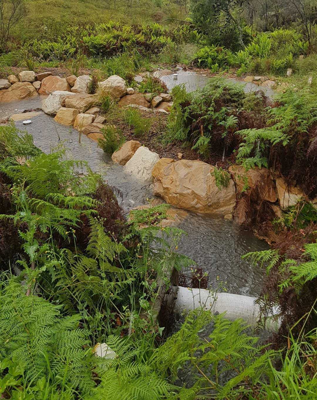 Stormwater-treatment-structure-above-Wentworth-Falls-Lake-swamp_2.jpg