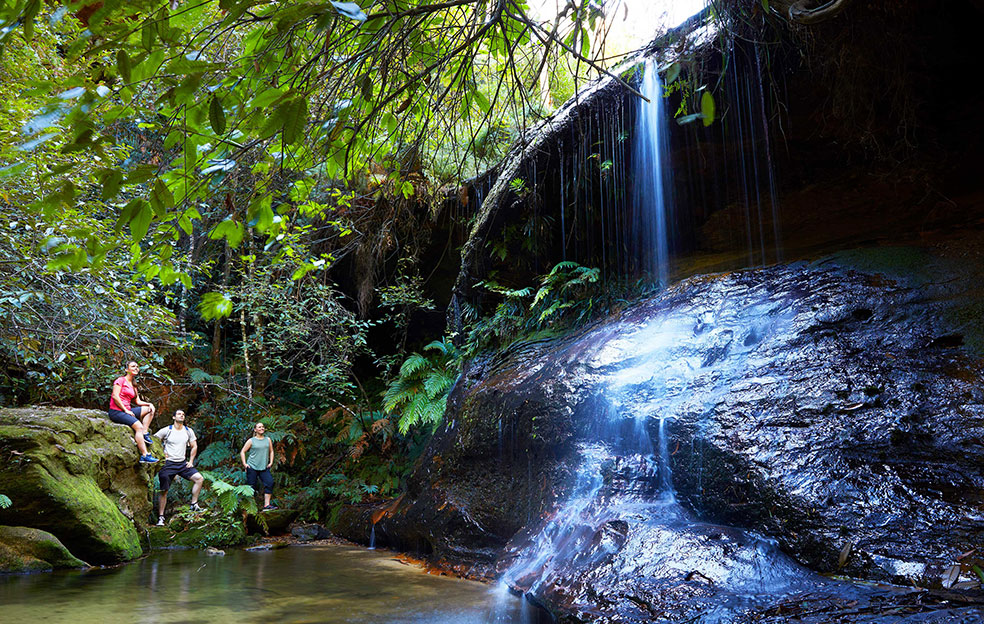 One of our beautiful waterfalls CREDIT: Destination NSW